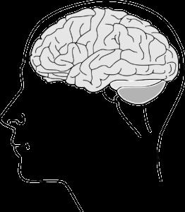 psychodermatologia,choroby skóry i zaburzenia psychiczne,choroby skóry a stres
